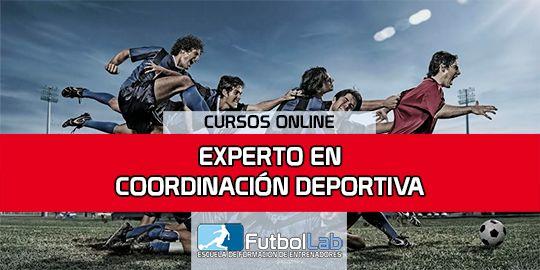 Portada del curso Experto en Coordinación Deportiva